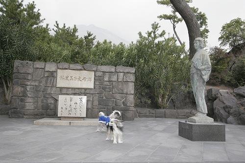 文学碑と芙美子像