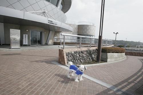 桜島火山砂防センター