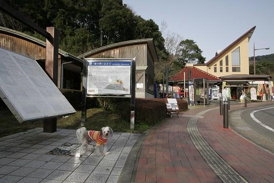 道の駅「山之口」